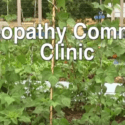 Homeopathy community clinic